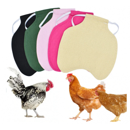 selle de protection poule
